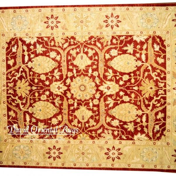 Oriental Rugs Houston: 8×10 Pishawar Rug 84P2-8165