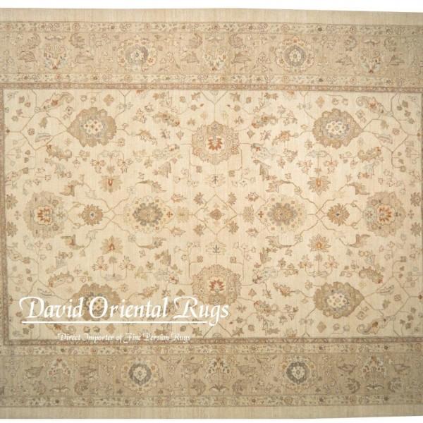 Oriental Rugs Houston: 9×12 Sultanabad Rug 94P2-15526