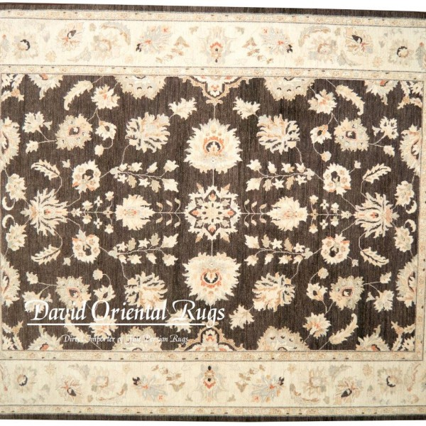 Oriental Rugs Houston: 9×12 Khotan Rug 94P2-16009